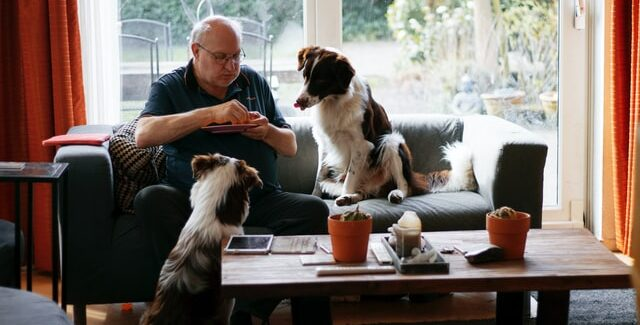 man with dogs in the house